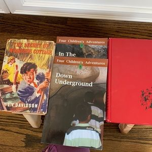 Classic and Rare Book Lot Happy Hollisters